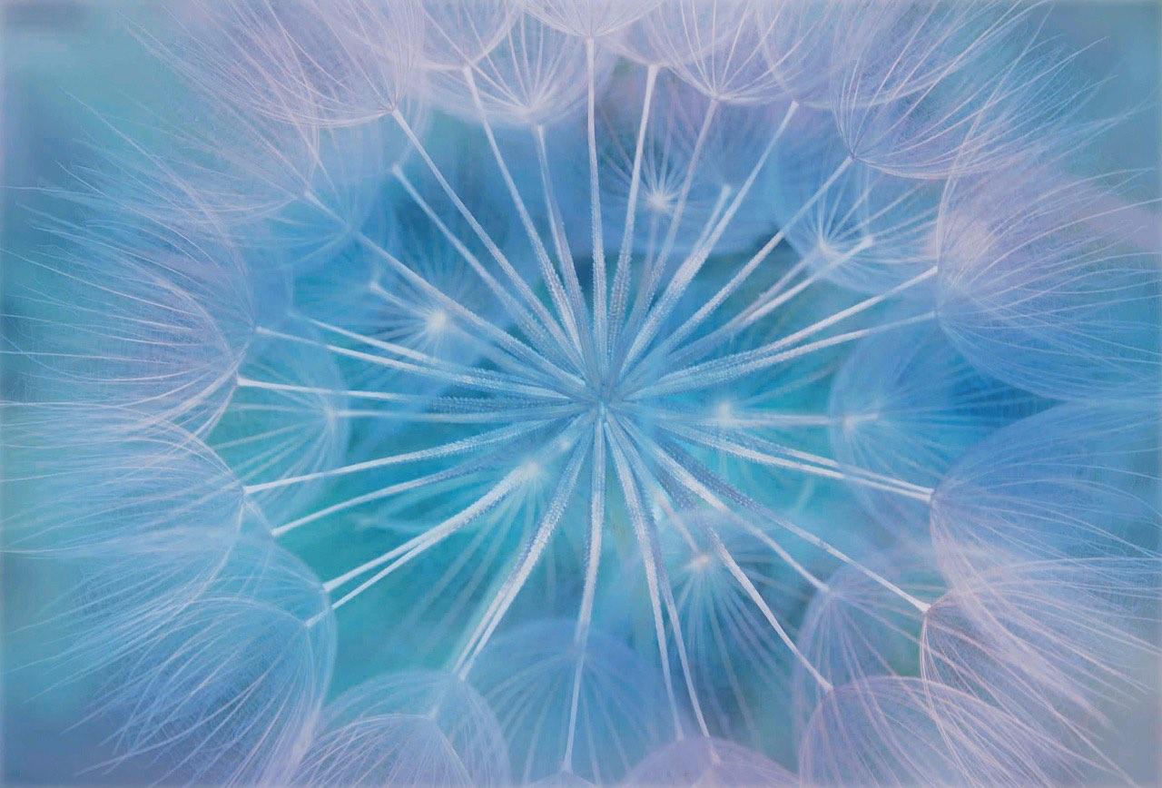"""Come imparare a rilasciare la tensione dal proprio corpo / Introduzione al concetto di """"window of tolerance"""""""
